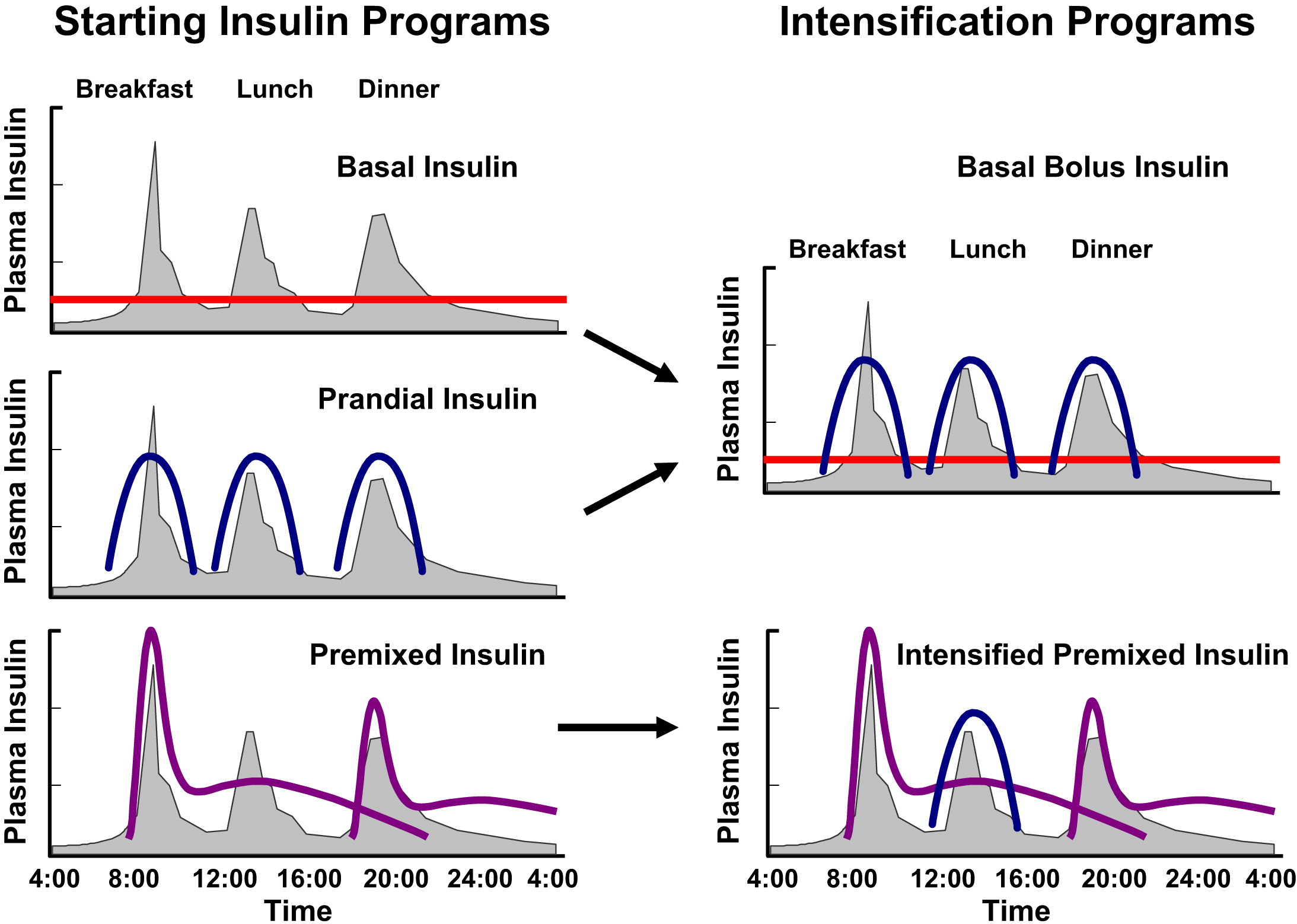 Insulin therapy in type 2 diabetes mellitus endocrinology and view hi res pooptronica Choice Image