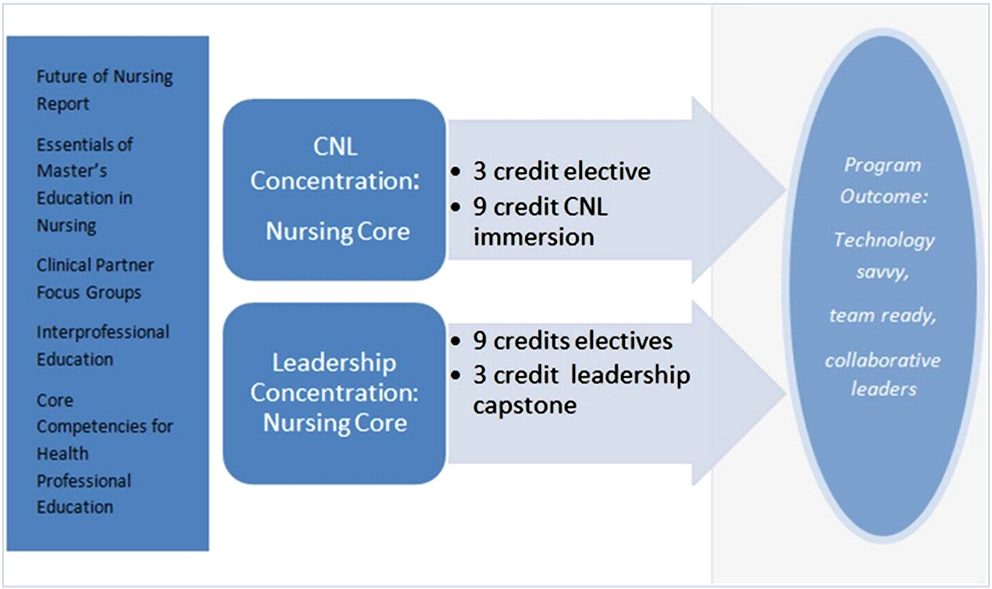 Past present and future trends of masters education in nursing view hi res malvernweather Choice Image
