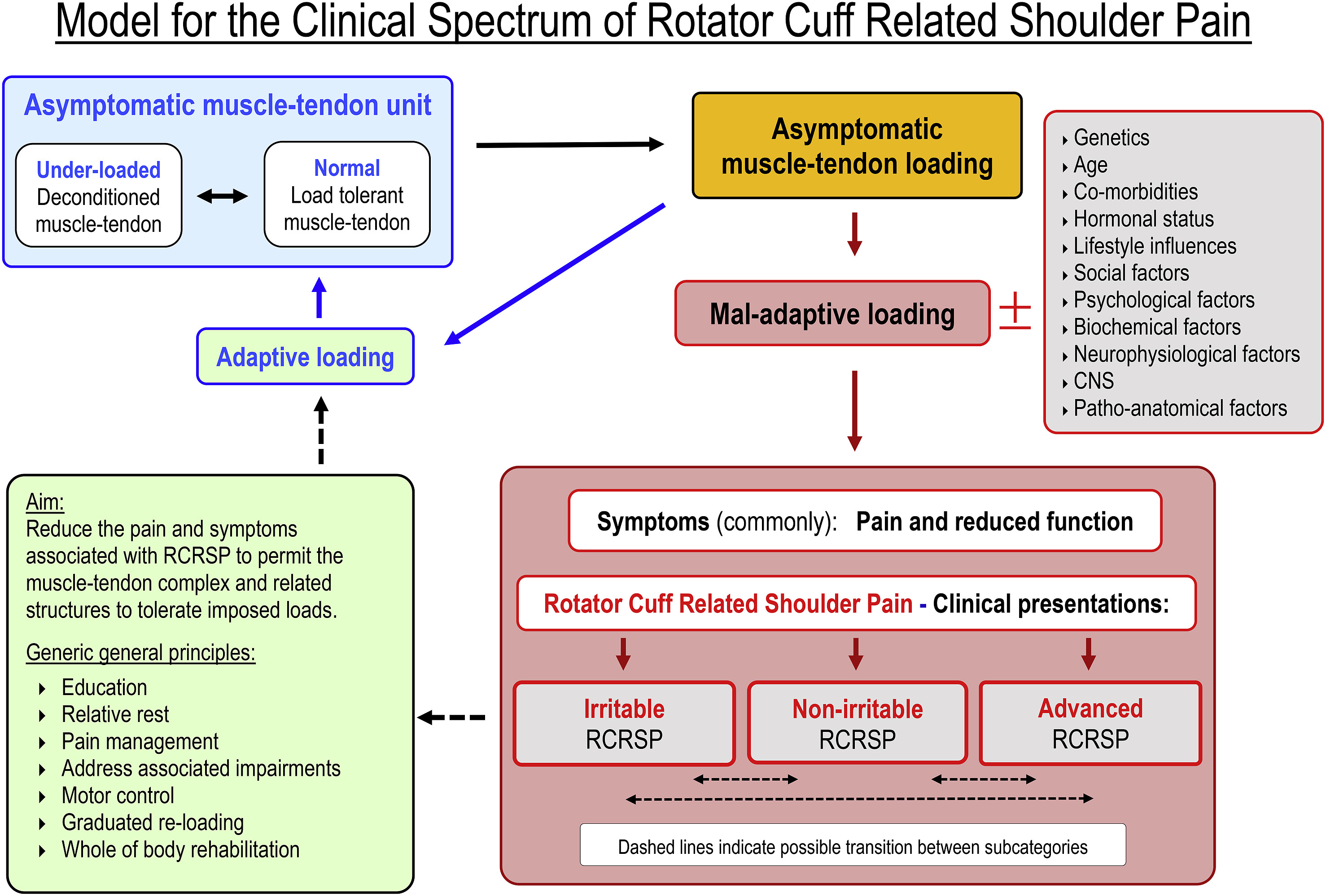 Rotator cuff related shoulder pain assessment management and hi res pooptronica Images