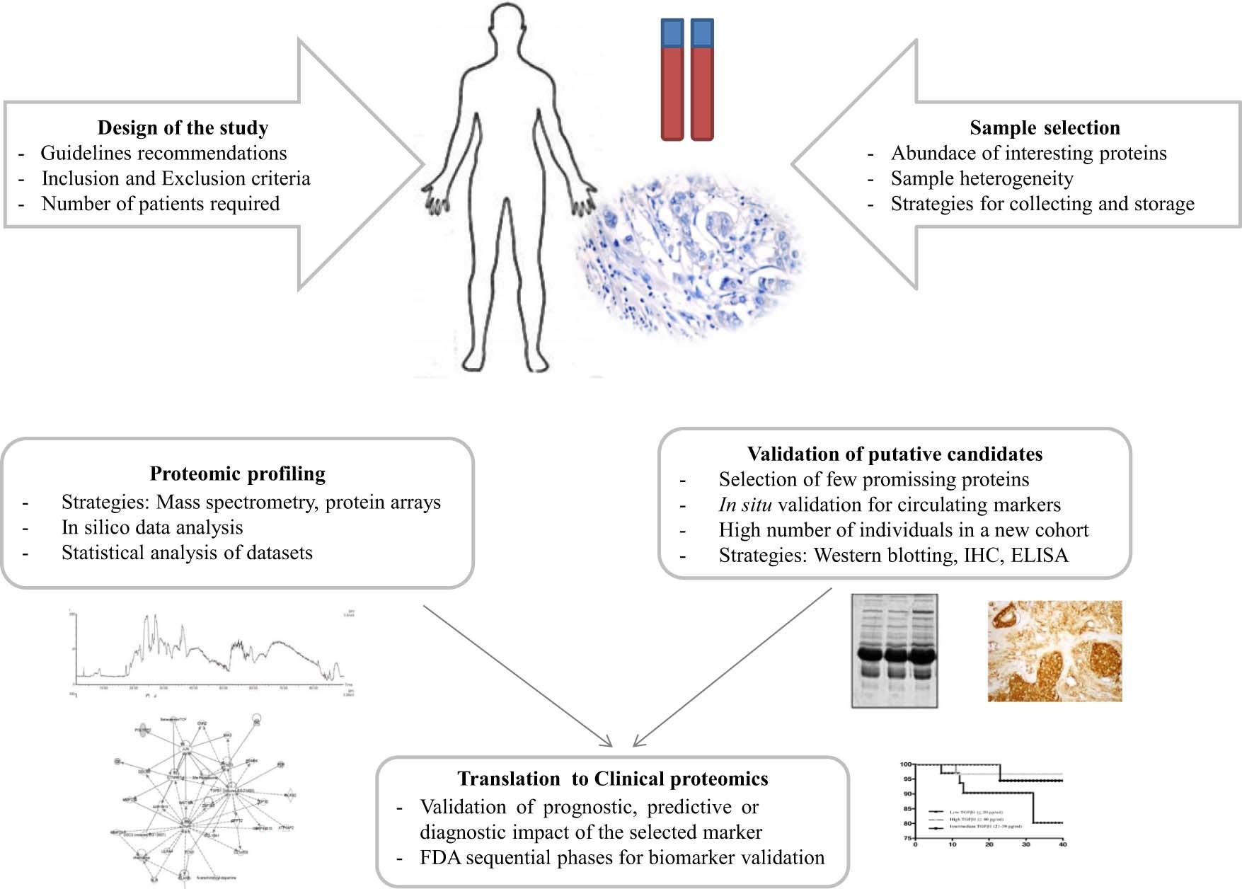 Clinical proteomics in cancer where we are cancer letters view hi res pooptronica
