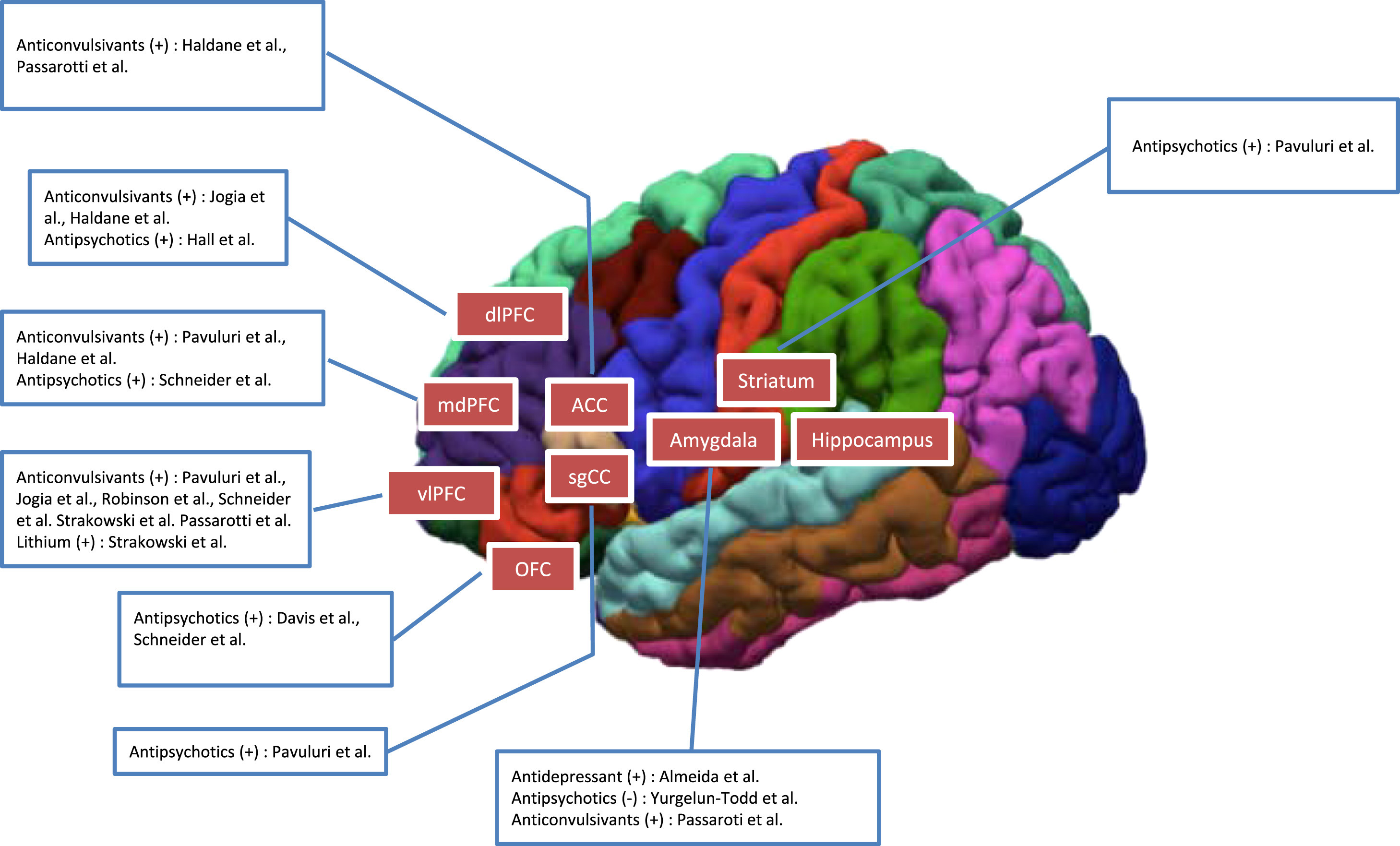 Brain functional effects of psychopharmacological treatments in ...