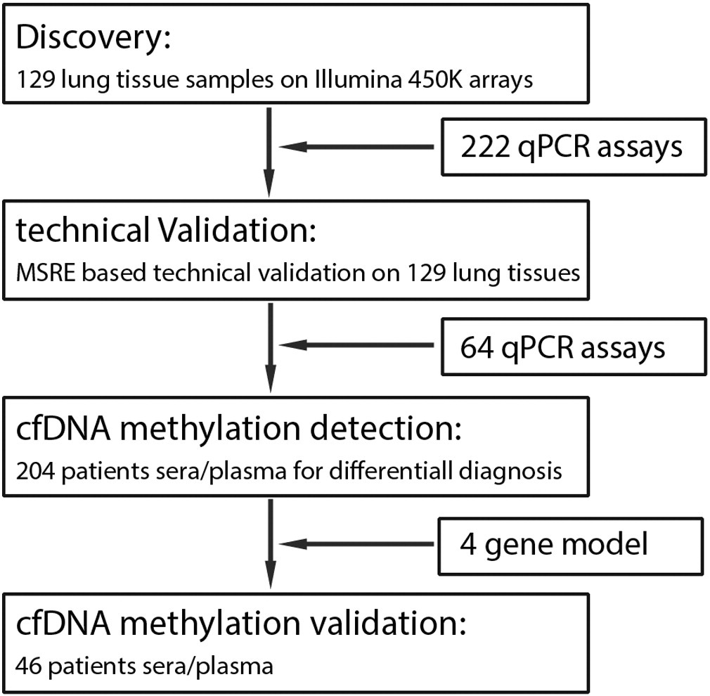 Diagnostic Performance of Plasma DNA Methylation Profiles in Lung ...